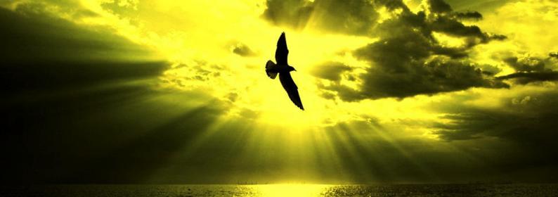 Salmo 27 – Oração de libertação - Palavra de Deus para Hoje