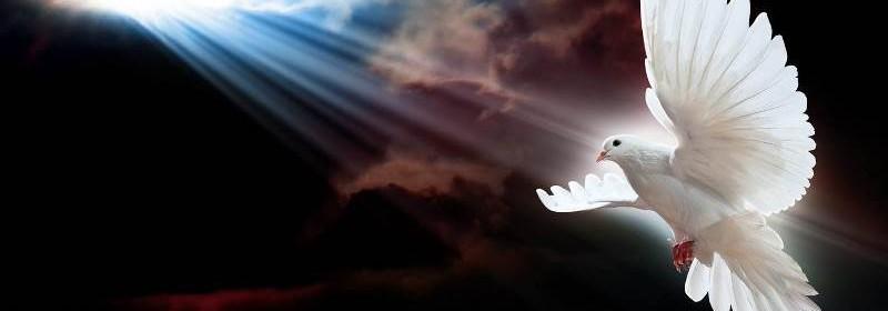 Como-ser-cheio-ou-cheia-do-Poder-de-Deus-imagem 2