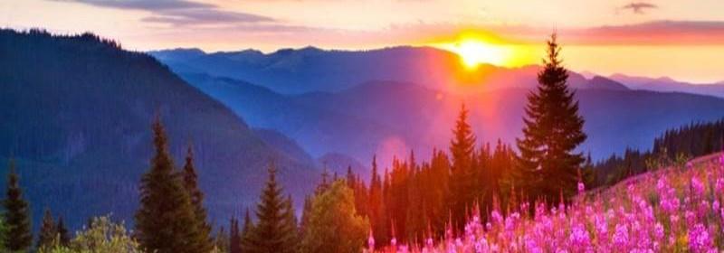 salmo-27-confiança-na-proteção-e-na-fidelidade-de-deus-imagem 3