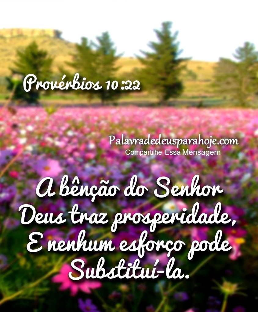 Mensagem de sabedoria e prosperidade hgdfht